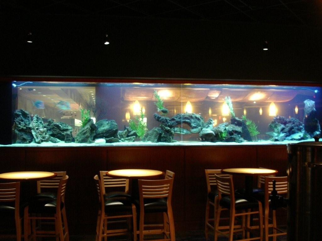 Image Result For Home Aquariums Pictures